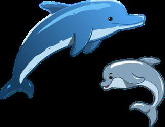 Basen Delfinek w Chocianowie